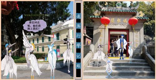 白鹭们的聚会 / 设计及影像来源:蓝海艺术有限公司