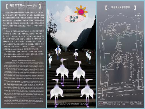 白鹭远游记录- 集合 / 设计及影像来源:蓝海艺术有限公司