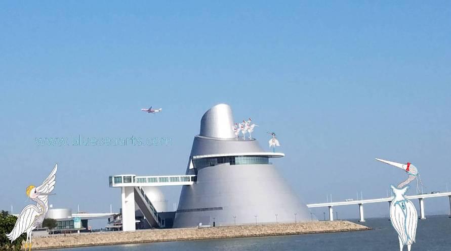 哗,那架飞机在澳门科学馆上方飞过!